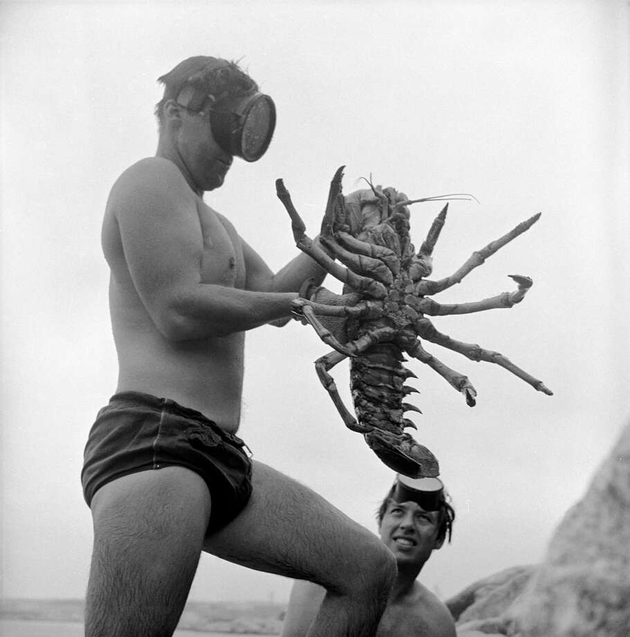 Low-angle view of an unidentified man in a diving mask as he holds a large lobster at the beach, San Onofre, California, July 1950. Photo: Loomis Dean, File / Time & Life Pictures