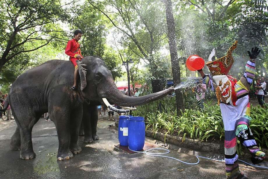 Enough is enough: After being soaked by a bucket-wielding clown figure, an elephant gets its revenge at the Dusit Zoo in Bangkok. Thailand will observe the Songkran festival, a New Year's celebration that's part water fight, Friday through Sunday. Photo: Sakchai Lalit, Associated Press