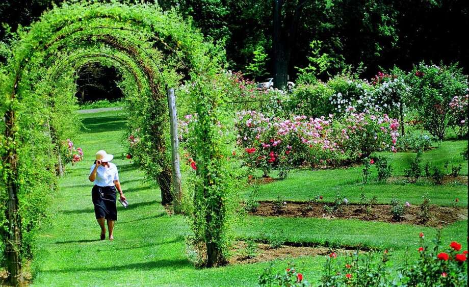 West Hartfordhas sold 11 lottery tickets with payout of at least $10,000, for a total amount of more than $25 million from the big tickets.  Elizabeth Gardens in Elizabeth park in West Hartford attracts visitors through out the day who stroll around, sit on benches and read etc.