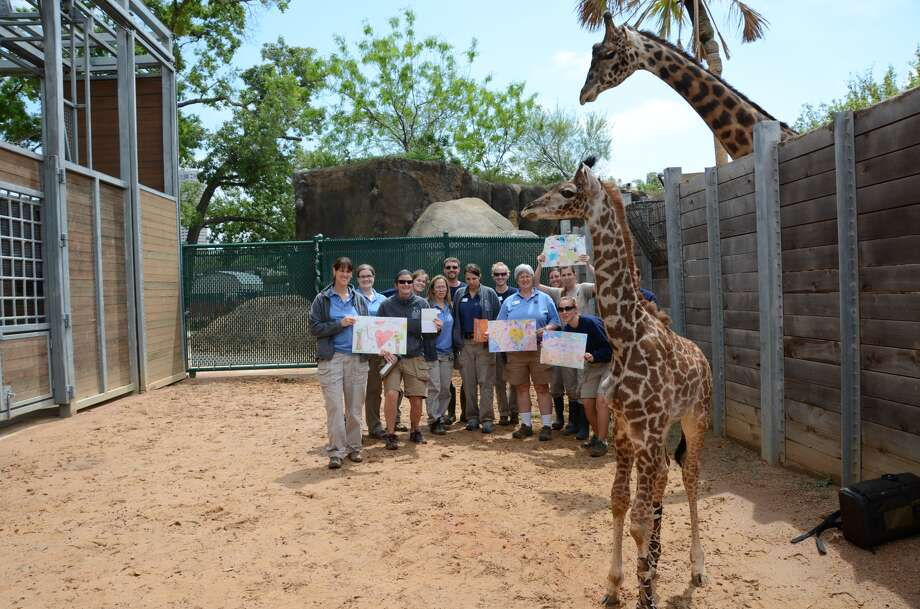 Yao's caretakers show off the get-well cards he has received. Children sent the cards to try to lift the spirits of the ailing baby giraffe.