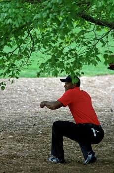Tiger Woods looks for his ball after hitting out of the rough off the second fairway during the fourth round of the Masters golf tournament Sunday, April 14, 2013, in Augusta, Ga. (AP Photo/Darron Cummings) Photo: Darron Cummings, Associated Press / AP