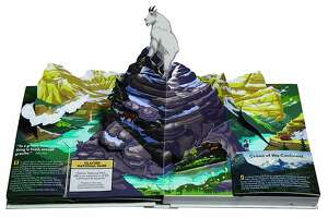 America's National Parks pop-up book features 18 popular parks with pop-up illustrations.