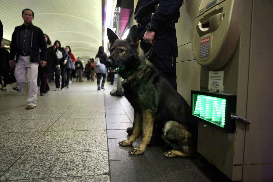 NEW YORK, NY - APRIL 16:  A police K-9 unit stands by as train passengers pass through Penn Station on April 16, 2013 in New York City. Police were out in force throughout New York, a day after explosions near the finish line of the Boston Marathon killed 3 people and wounded more than 170 others. Photo: John Moore, Getty Images / 2013 Getty Images