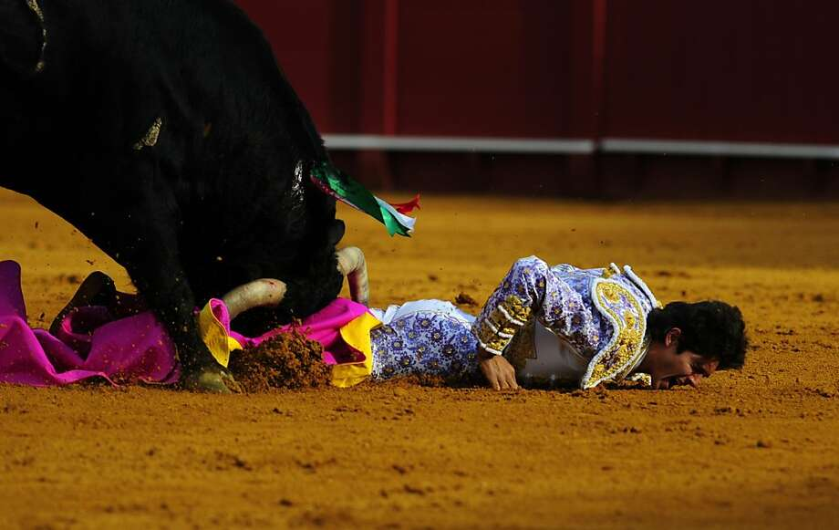Gored in the ring:A bull with a lance hanging from its head gets its revenge on French matador Sebastian Castella during a bullfight at the Maestranza bullring in Sevilla, Spain. Castella's condition was not available. Photo: Cristina Quicler, AFP/Getty Images