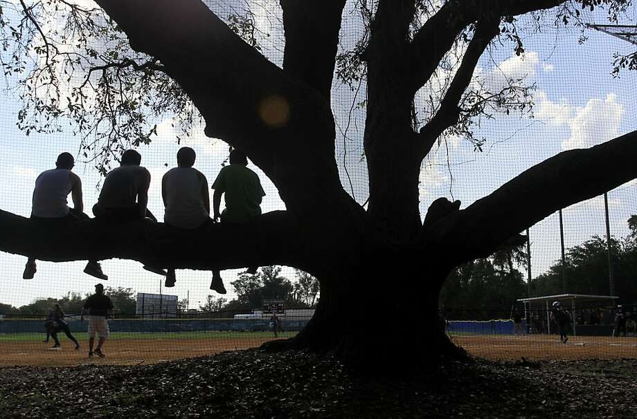 Max Grossi, from left, Christian Alonte, Ryan Perry and Jacob Brown watch the district softball semifinals 3A-9 between St. Petersburg Catholic High School and Northside Christian at Admiral Farragut Academy on Tuesday, April 16, 2013, in St. Petersburg, Fla.  (AP Photo/The Tampa Bay Times, Chris Zuppa TAMPA OUT; CITRUS COUNTY OUT; PORT CHARLOTTE OUT; BROOKSVILLE HERNANDO OUT; USA TODAY OUT; MAGS OUT Photo: Zuppa, Chris, Associated Press