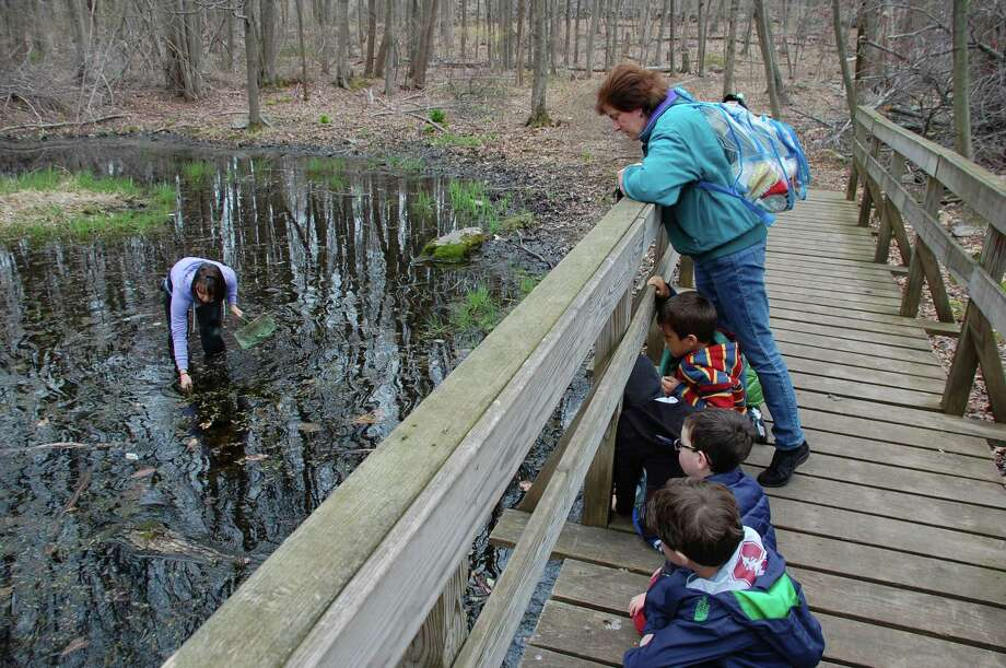 WESTPORT Soak in nature along the Earthplace/Swamp Loop Trail from 1 to 2 p.m. Saturday, June 7. Click here for more info. Photo: Jarret Liotta / Westport News contributed