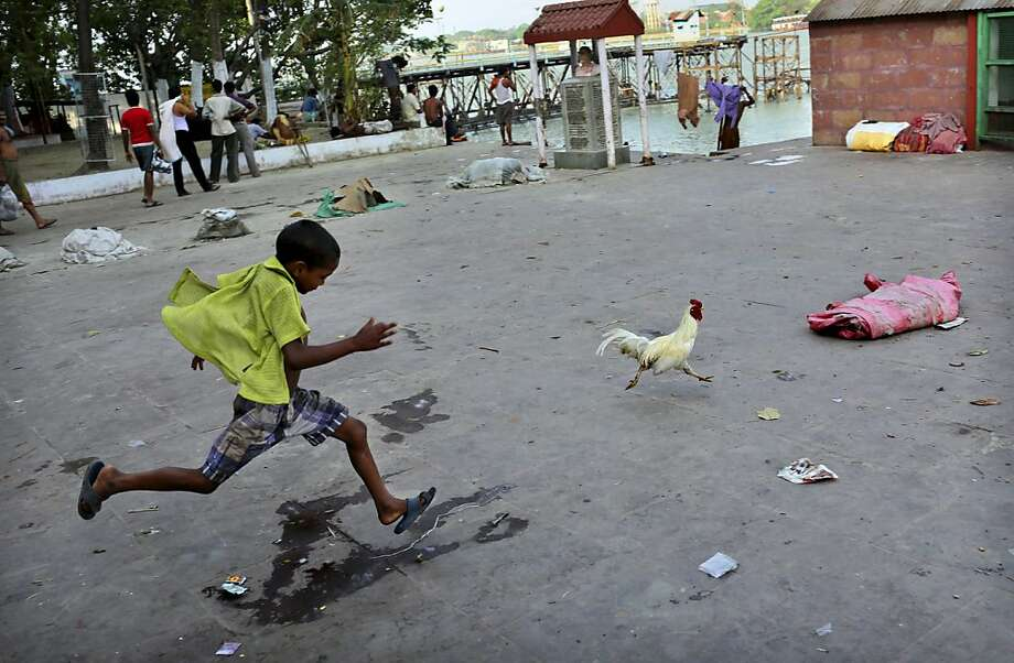 In this picture taken Tuesday, April 16, 2013, an Indian boy chases a chicken near the Hooghly river in Kolkata, eastern India. The Hooghly is a distributary of the Ganges River, which is revered by Hindus and considered holy. (AP Photo/Kevin Frayer) Photo: Kevin Frayer, Associated Press