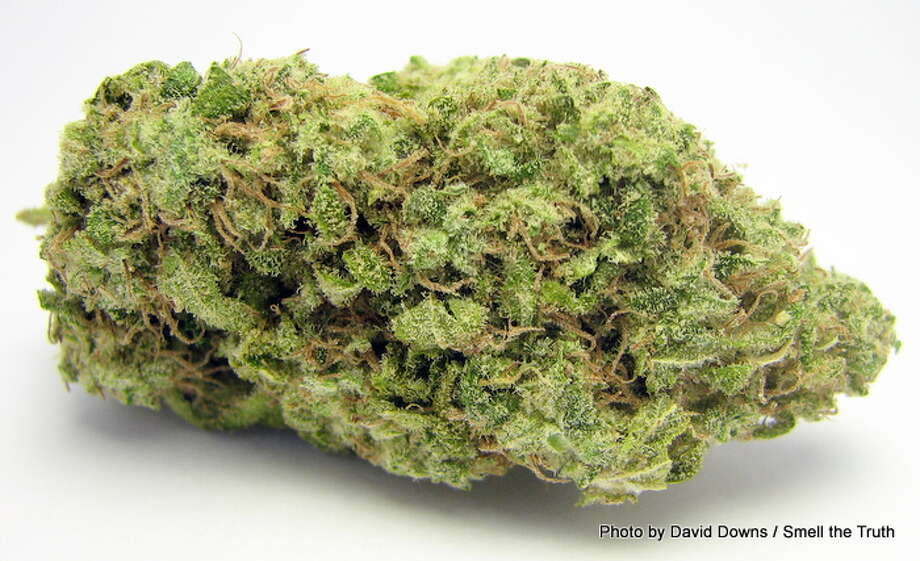 AK-47 is one of North America's most classic sativa strains - a mix of energetic, psychedelic tropical plants from Mexico, and South America. Here, Cherry AK-47 brightens up the grassy sativa flavor with a sweet berry kick. Very tasty. Photo: Picasa, David Downs / Smell The Truth