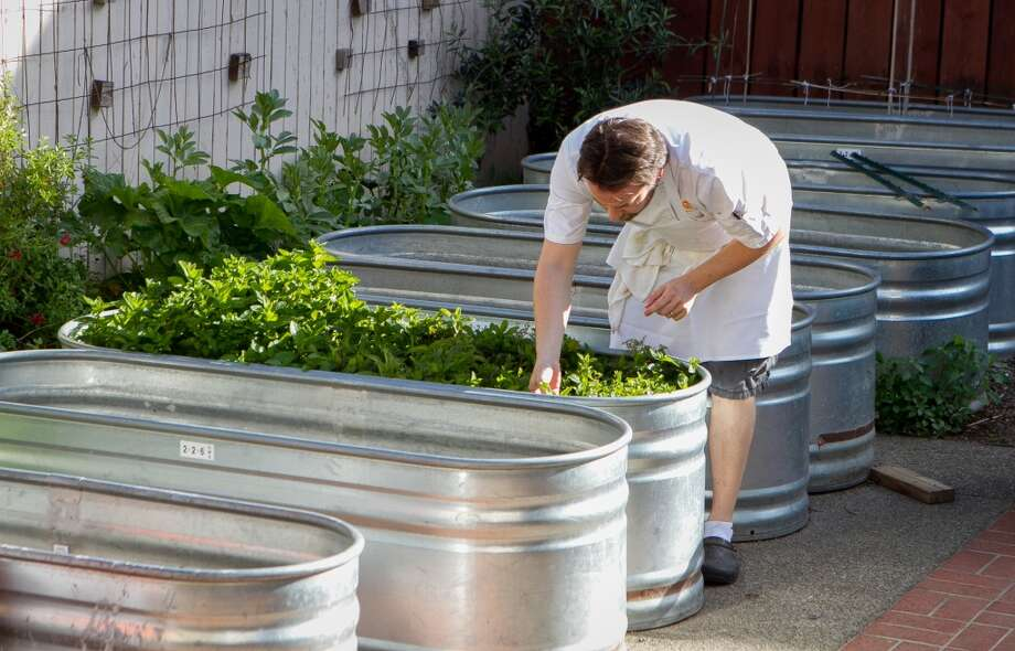 Chef/Owner Oliver Souvestre picks herbs from the back garden.
