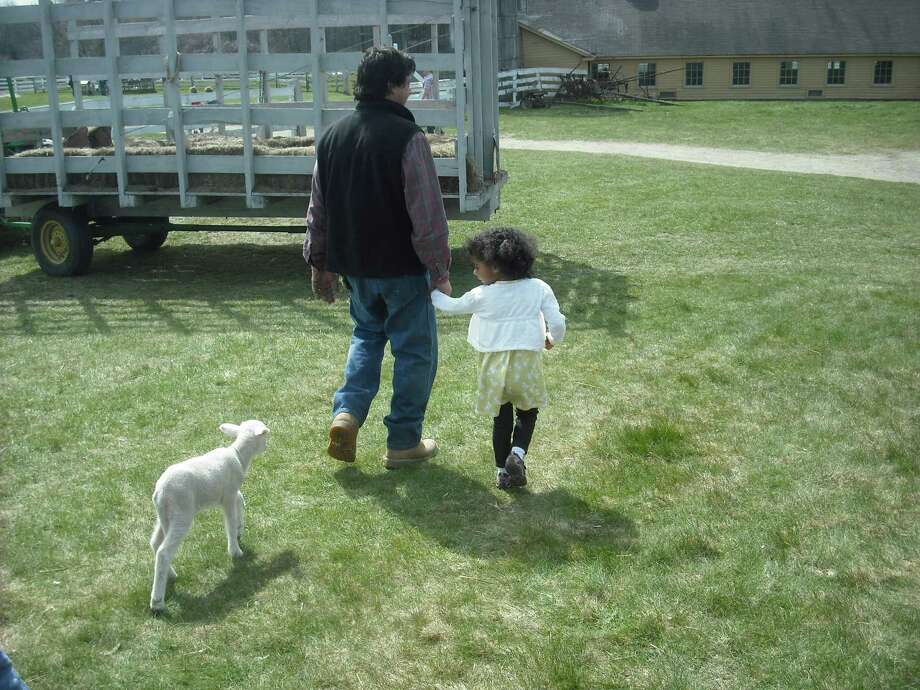 Billy Mangiardi, village?s director of farm and facilities, and young Olivia, daughter of freelance writer Elizabeth Floyd Mair, became fast friends at Hancock Shaker Village's baby animal days. (Elizabeth Floyd Mair)