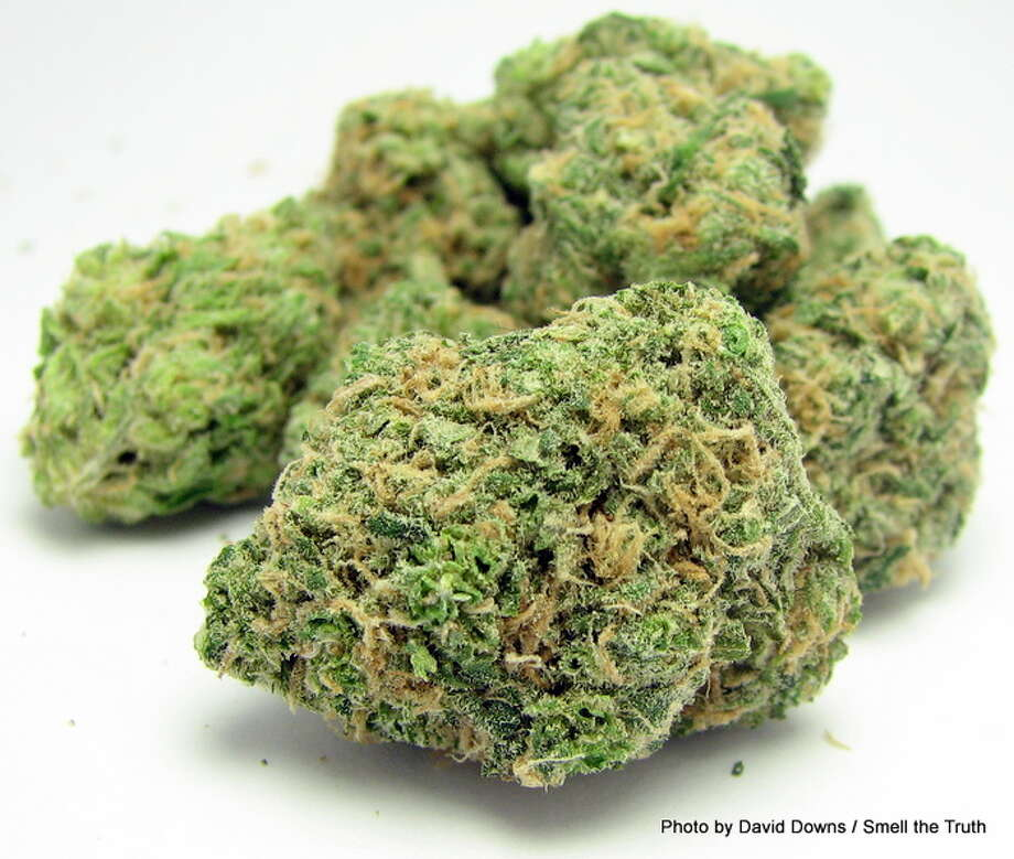 Throttle back from all that sativa with Blue Dream, a 50-50 balance of sativa Haze and indica Blueberry. Photo: Picasa
