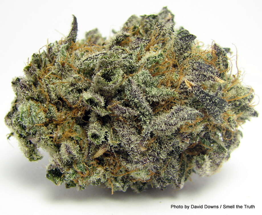 Goodnight, moon. Blackberry Kush offers a sweet, hashy, narcoleptic end to a long day of ... whatever you got up to. Photo: Picasa