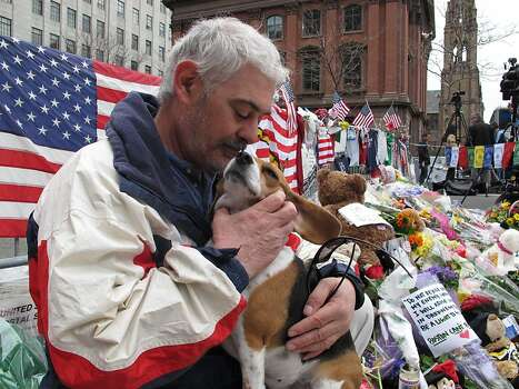 Ed Starbuck scrubs on his 5-year-old beagle, Rosie, as they stand vigil at a makeshift memorial to the Boston Marathon bombings on Thursday, April 18, 2013. The 57-year-old retiree says he rides the bus each day from Cape Cod to Boston to volunteer at the barricade _ and to help himself heal. (AP Photo/Allen Breed) Photo: Allen Breed, Associated Press