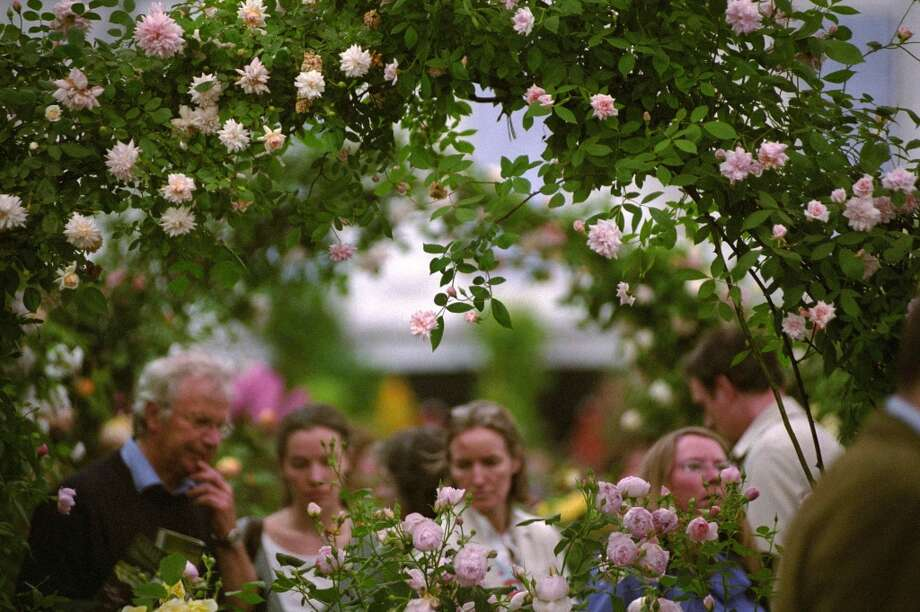 Visitors at The Royal Horticultural Society Chelsea Flower Show, which celebrates its centennial May 21-25. www.rhs.org.uk/chelseaflowershow