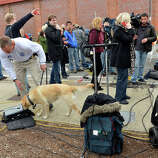 A dog sniffs equipment before Massachusetts Governor Deval Patrick spoke to the media at a shopping mall on the perimeter of a locked down area as a search for the second of two suspects wanted in the Boston Marathon bombings takes place on April 19, 2013 in Watertown, Massachusetts. AFP PHOTO/Stan HONDA