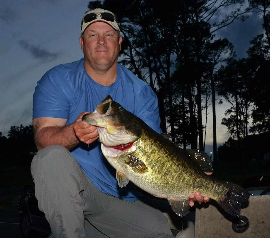 A 12.54 pound fish broke a record in a Nacogdoches lake recently. DNA testing showed that its mother also broke a record in a Laredo lake, roughly 450 miles away, almost a decade ago. Photo: Handout