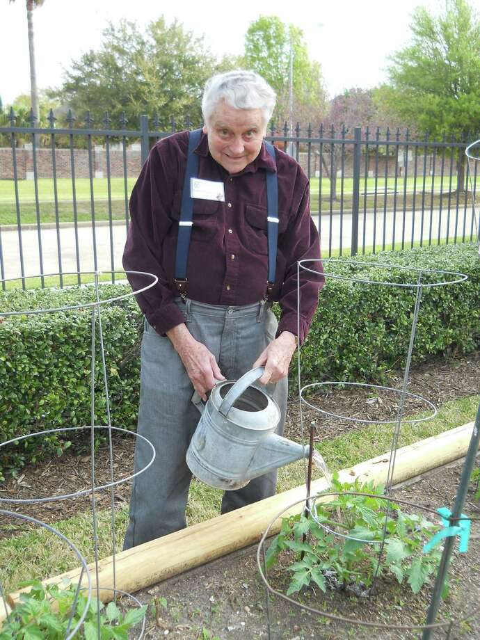 Eddie Buddemeyer, Parkway Place resident, takes care of his tomato plants.