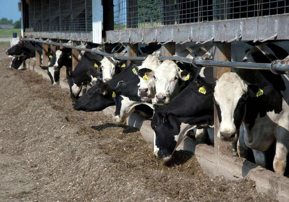 The nation's dairy farmers say the new tariffs the Trump administration has imposed on Mexico, China and Canada have cost them more than $1 billion in profits since May. The U.S. tariffs provoked those nations to impose retaliatory tariffs on U.S. farm products, which hurt exports.