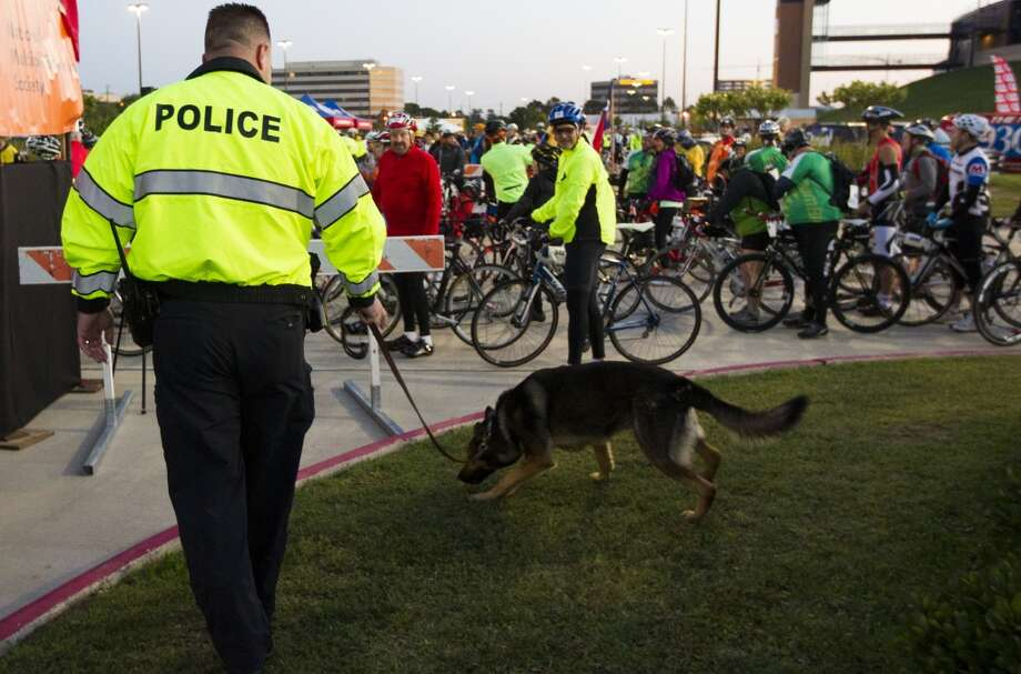 Spring Branch ISD Sgt. Kevin Nugent and his dog Dutch patrol Tully stadium during the start of the BP MS 150 on Saturday, April 20, 2013, in Houston. Dutch is a explosive and firearms sniffing dog.
