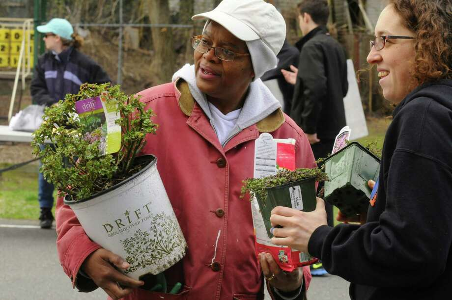 JoAnn Morton, left, and Rana Morris work with planting during the third annual South End Earth Day at Elizabeth Street Park on Saturday April 20, 2013 in Albany, N.Y.(Michael P. Farrell/Times Union) Photo: Michael P. Farrell