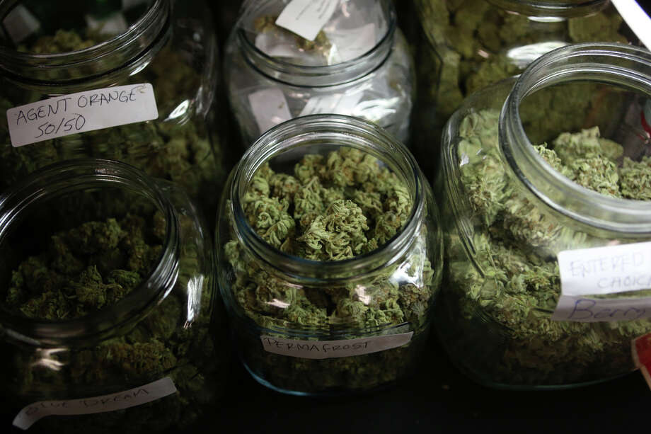 Marijuana from The Healing Leaf collective in Lake Stevens is show. Photo: JOSHUA TRUJILLO, SEATTLEPI.COM / SEATTLEPI.COM