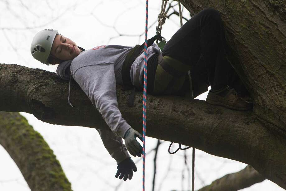 "Ellyn Rivers take a moment to relax during her exhausting ascent at a tree-climbing event put on by the Seattle-local, eco-adventuring Canopy Climbers in honor of Earth Day on Sunday at Volunteer Park in Seattle. Attendees took turns ascending a 110-foot red oak named ""Her Majesty."" Photo: JORDAN STEAD, SEATTLEPI.COM / SEATTLEPI.COM"