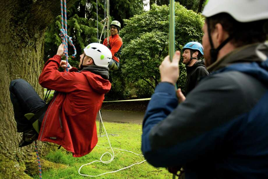 "From every branch, enthusiasts enjoy a tree-climbing event put on by the Seattle-local, eco-adventuring Canopy Climbers in honor of Earth Day on Sunday at Volunteer Park in Seattle. Attendees took turns ascending a 110-foot red oak named ""Her Majesty."" Photo: JORDAN STEAD, SEATTLEPI.COM / SEATTLEPI.COM"