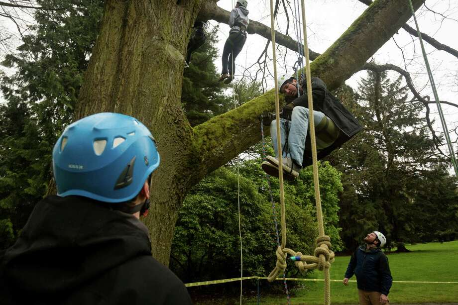 "Dave Greenbaum, center, begins his ascent at a tree-climbing event put on by the Seattle-local, eco-adventuring Canopy Climbers in honor of Earth Day on Sunday, at Volunteer Park in Seattle. ""I've wanted to do this for years,"" Greenbaum said. Attendees took turns ascending a 110-foot red oak named ""Her Majesty."" Photo: JORDAN STEAD, SEATTLEPI.COM / SEATTLEPI.COM"