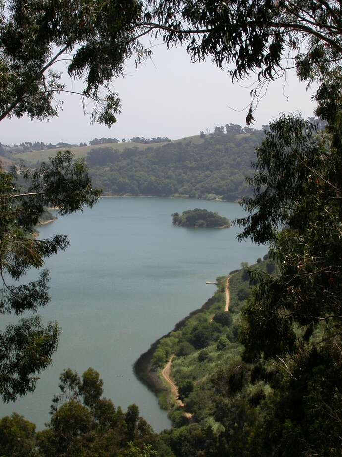View of Lake Chabot from Anthony Chabot walk-in site