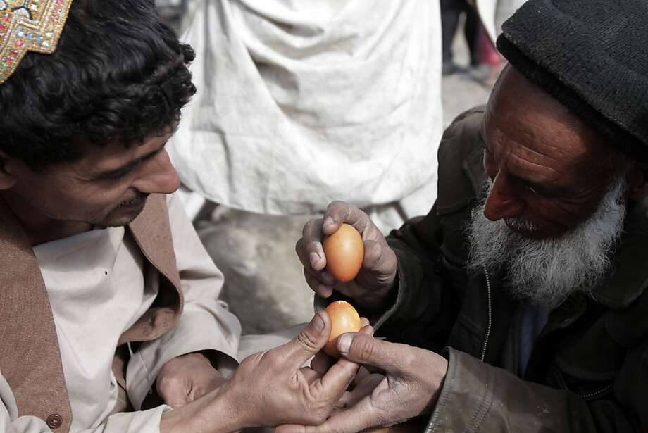 Local yolk-off: Afghan men duel in a Tukhum jangi match on the outskirts of Kabul. Tukhum jangi, or egg fighting, is played with one competitor holding an egg end up as another taps it with his egg until one of the shells cracks. Photo: Rahmat Gul, Associated Press
