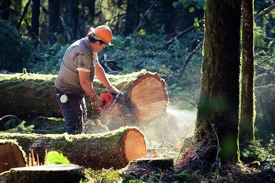 2. Lumberjack BLS National Salary Median: $32,870 Projected Job Growth: 4% Photo: AP., Flickr Source: CareerCast.com Photo: Flickr