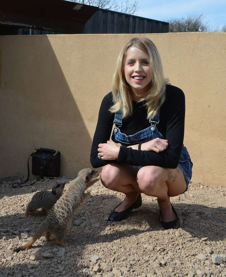 Peaches' pit stop: Peaches Geldorf, journalist/model and daughter of Bob Geldorf, allows the meerkats to paw her knees during a visit to the London Zoo. Photo: Handout, Getty Images