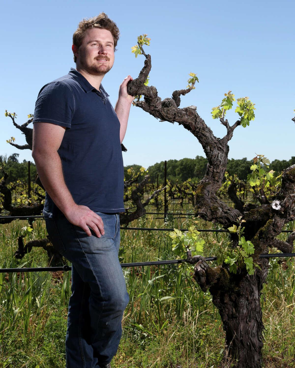 Morgan Twain-Peterson of Bedrock Wine poses in a vineyard of century-old zinfindel vines near Glen Ellen, Calif., Wednesday, April 17, 2013.