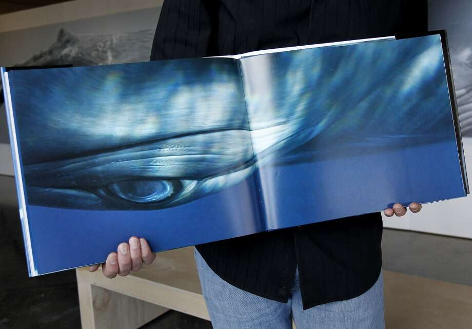 Bryant Austin shows a portrait of the eye of a Minke whale named Ella he is particularly fond of from his book. Bryant Austin has photographed whales close up and his intimate portraits are on display at the Museum of Monterey, Calif.