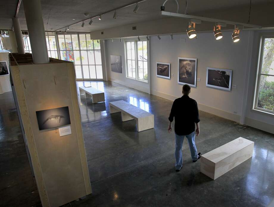Bryant Austin walks through his exhibit of whale portraits. Bryant Austin has photographed whales close up and his intimate portraits are on display at the Museum of Monterey, Calif.