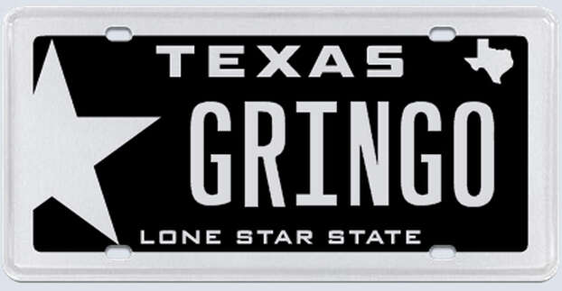 """What the applicant:""""Gringo is just a way of saying white boy or white guy. I have never taken offense to this ever, nor have I seen any other white person taking offense to it."""" Photo: MyPlates.com"""