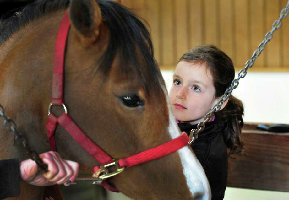 Clara D'Amico, 6, brushes a pony named Peggy during the Horse Tales Literacy Project at Trowbridge Farm in Bridgewater, Conn. Wednesday, April 24, 2013. Photo: Michael Duffy / The News-Times