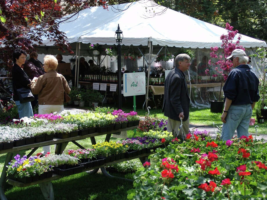 A plant boutique will be part of the 78th Dogwood Festival Friday through Sunday, May 3-5, on Fairfield's Greenfield Hill. Photo: Contributed Photo