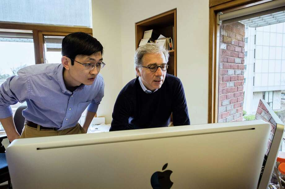 In this April 5, 2013 photo provided by Harvard University, Harvard Stem Cell Institute Co-Director Doug Melton, right, and Peng Yi, a post doctoral fellow in his lab, review data from recent experiments in Melton's lab in Cambridge, Mass. Melton and Yi have identified a hormone that can sharply boost a mouse's supply of cells that make insulin, a discovery that may someday provide a diabetes treatment. People make the hormone naturally, and the new work suggests that giving them more might one day let patients avoid insulin shots. (AP Photo/Harvard University) Photo: HOEP / Harvard