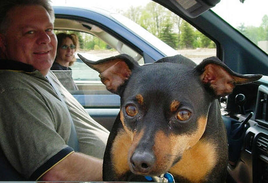 9. Moving object in the vehicle, such as a pet, 1 percent of distracted drivers. Photo: CaptPiper, Flickr Photo: Flickr