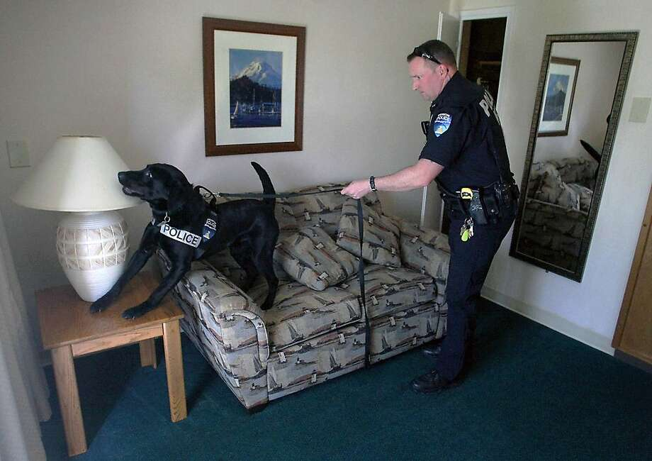 No pot busts for you, Dusty. You're on the hotel towel theft beat now:Bremerton Police Officer Duke Roessel and 