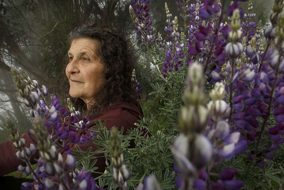 Berkeley chemist Arlene Blum has devoted herself to researching the effects of flame retardants in products. Photo: Michael Macor, The Chronicle
