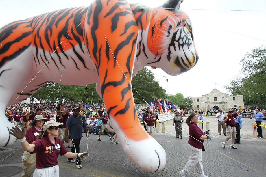 Trinity University's balloon hits the Alamo as the Battle of Flowers Parade moves through the downtown area  on  April 26 2013. Photo: TOM REEL