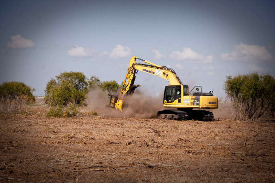 Mesquite is being harvested by heavy equipment on property about 40 miles from Corpus Christi. A Czech Republic company, GreenHeart Energy LLC, based in San Antonio, will begin harvesting mesquite near Corpus Christi to ship to European utilities to burn at electric power plants. Photo: GREENHEART