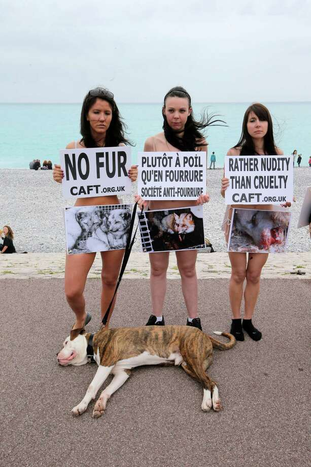 "Members of the French branch of the international anti-fur group ""CAFT"" (The Coalition to Abolish the Fur Trade) demonstrate naked with boards to denounce the breeeding and use of animal for fur production, on the ""Promenade des Anglais"", in Nice southeastern France, Saturday, April 27, 2013. On center board, reading ""rather nudity than fur"". Photo: AP"