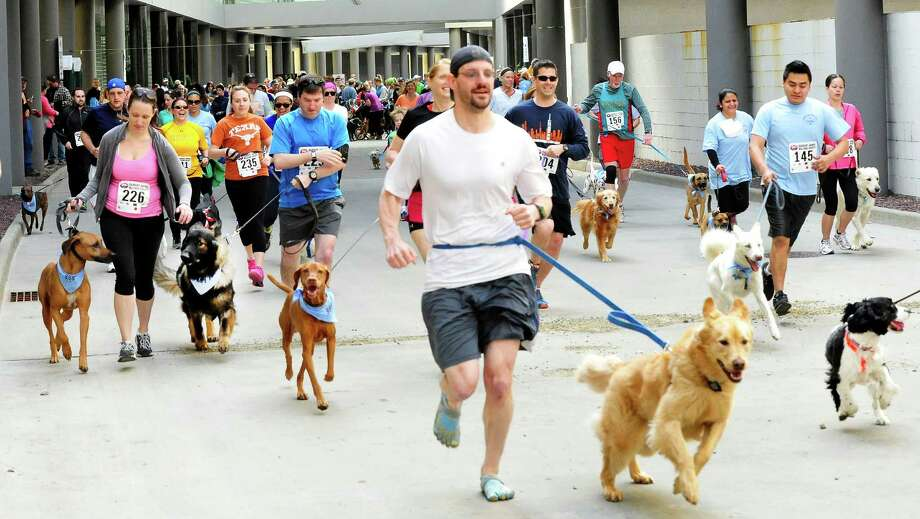 "The Danbury Animal Welfare Society's ""Run Your Tail Off 5K"" road race took place at the Matrix Center in Danbury, Conn. Sunday, April 28, 2013. Runners ran with their dogs as a fundraiser to support DAWS no kill shelter. Photo: Michael Duffy / The News-Times"
