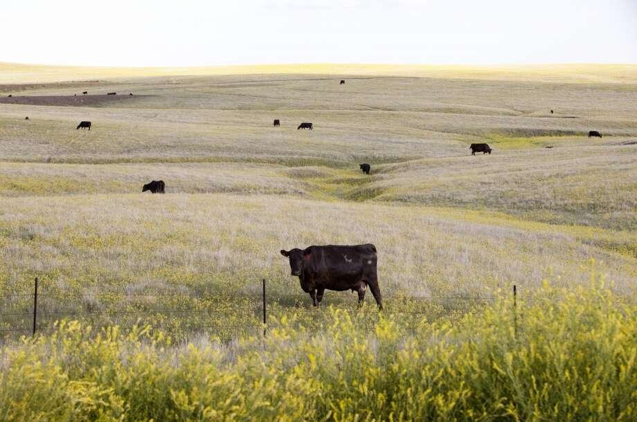 18. South Dakota - 39.4 percent