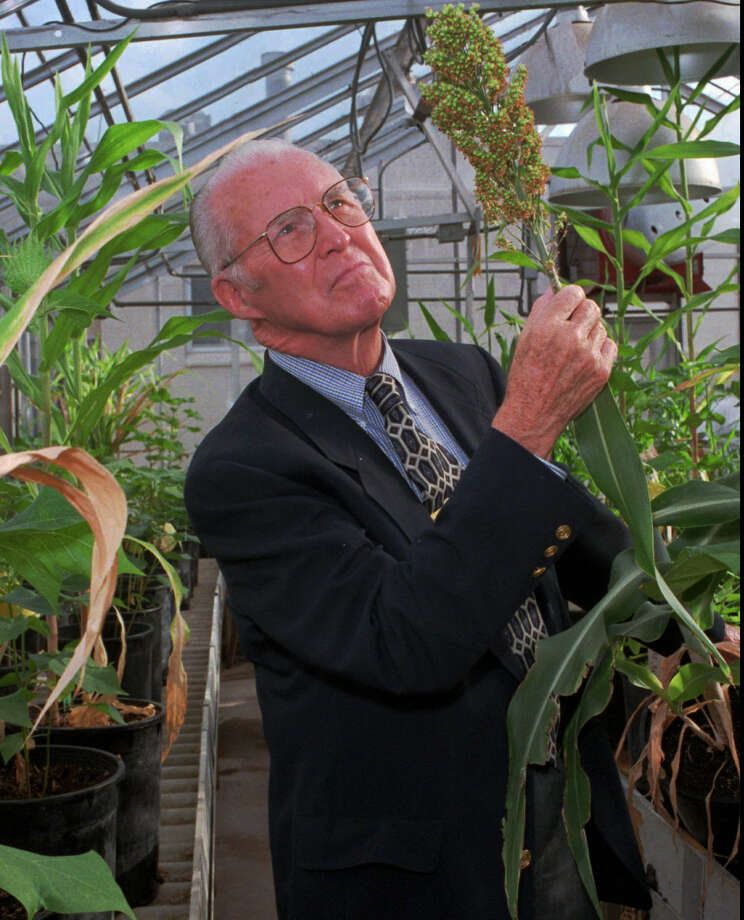 "Famed Texas A&M scientist Norman Borlaug led the ""Green Revolution,"" credited with saving as many as 1 billion people from starvation by increasing crop yields through a number of mechanisms. Photo: Associated Press File Photo"