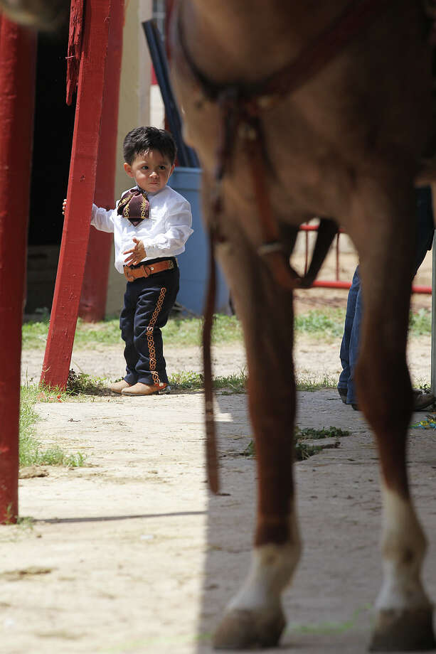 Adrian Villasenor, (tilde over last n), 7, waits for his dad for a ride on a horse before the start of Fiesta Charreada put on by the San Antonio Charros Association, Sunday, April 28, 2013. Photo: Jerry Lara, San Antonio Express-News / San Antonio Express-News