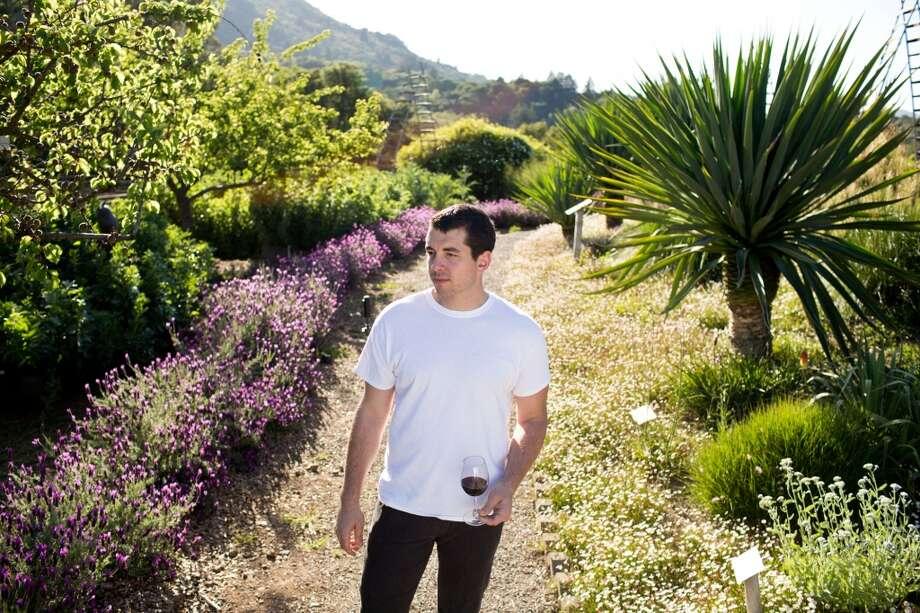Glen Ellen Star: More garden shots.